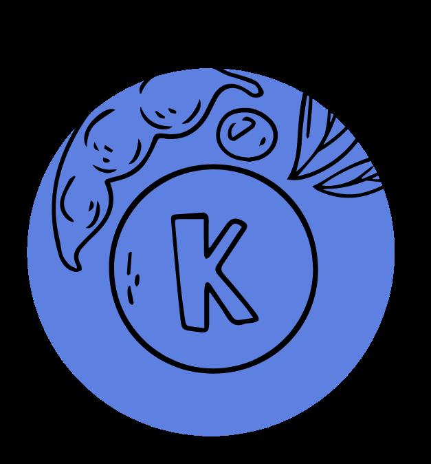 Vitamine K feature image 02